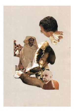 Collage_49
