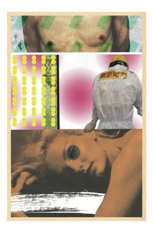 Collage_fs